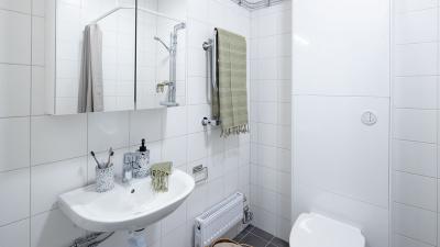 Interörbild Toalett